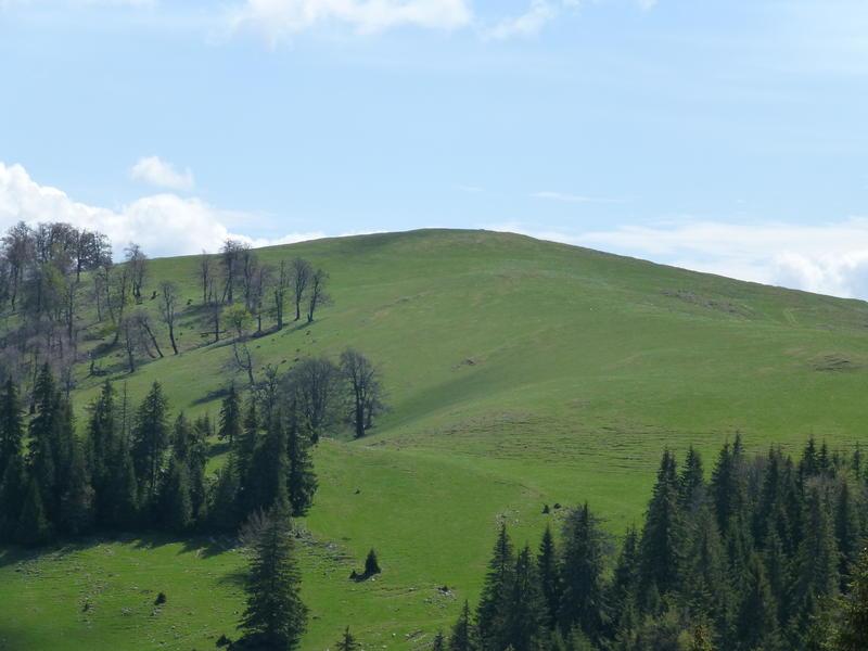 Karpat niva tour '14. Rumania 18356991cw