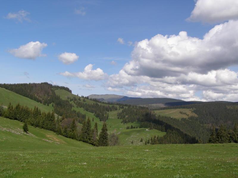 Karpat niva tour '14. Rumania 18356992wu