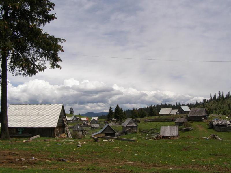 Karpat niva tour '14. Rumania 18357622mk