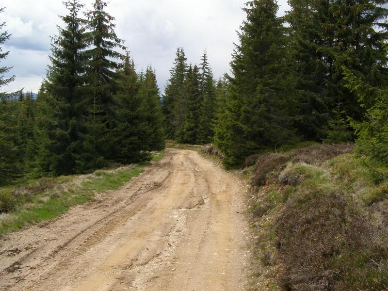 Karpat niva tour '14. Rumania 18357794xn