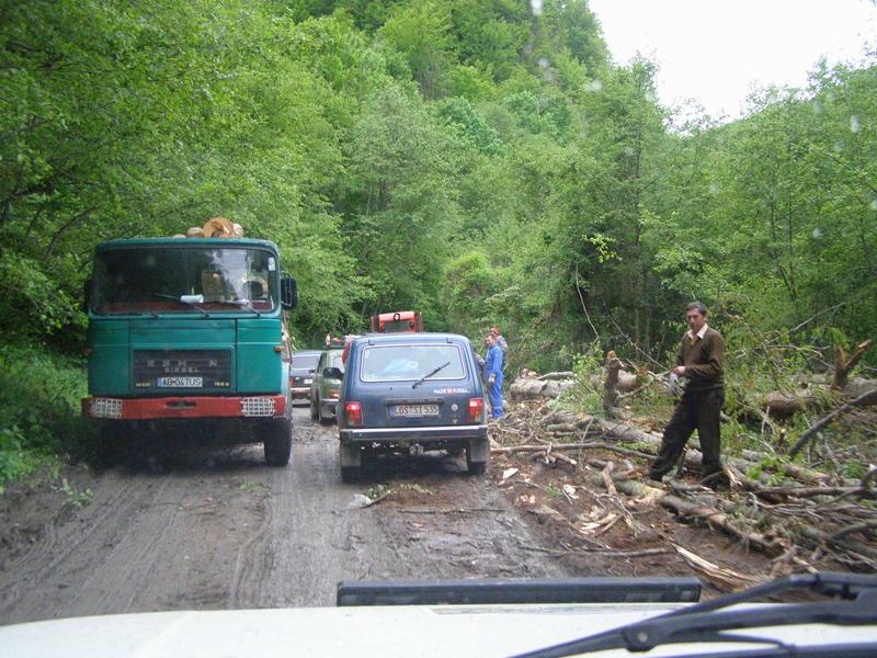 Karpat niva tour '14. Rumania 18469924iy