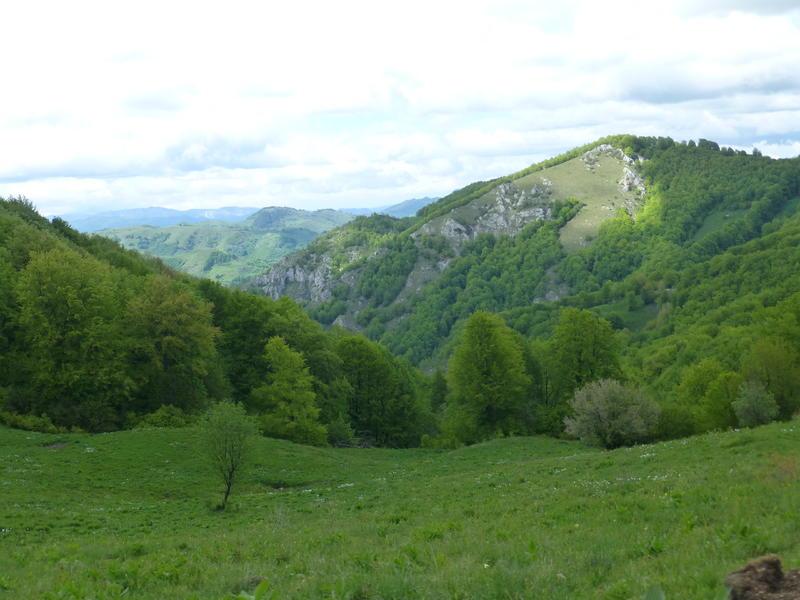 Karpat niva tour '14. Rumania 18516979ze