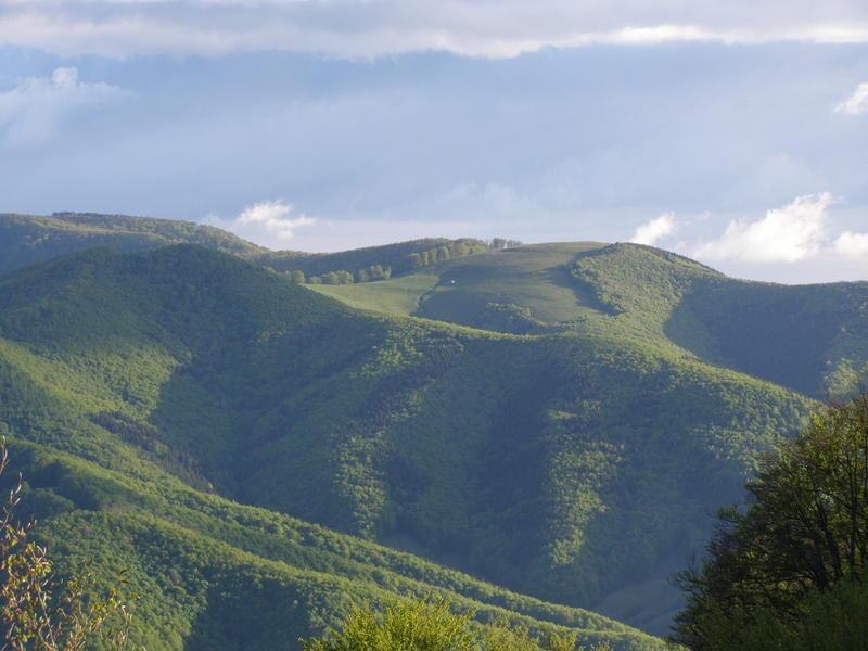 Karpat niva tour '14. Rumania 18517616rv