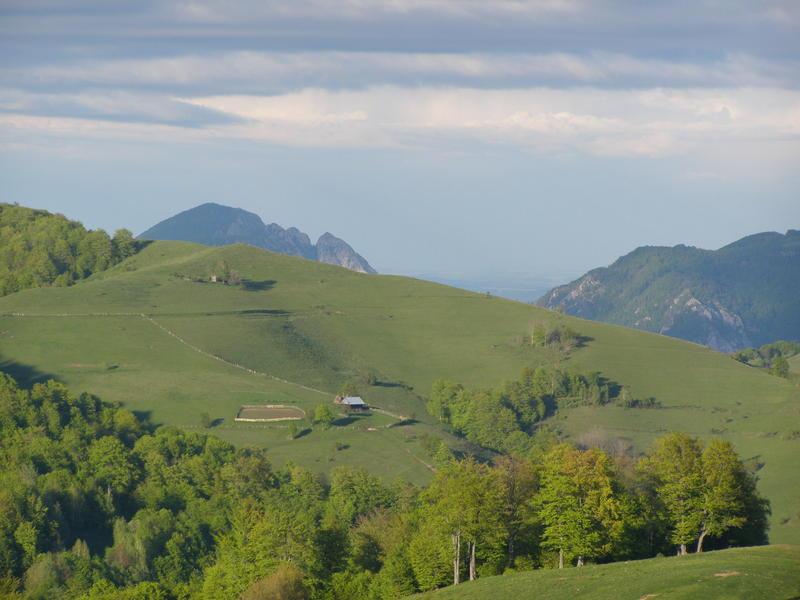 Karpat niva tour '14. Rumania 18517710zm