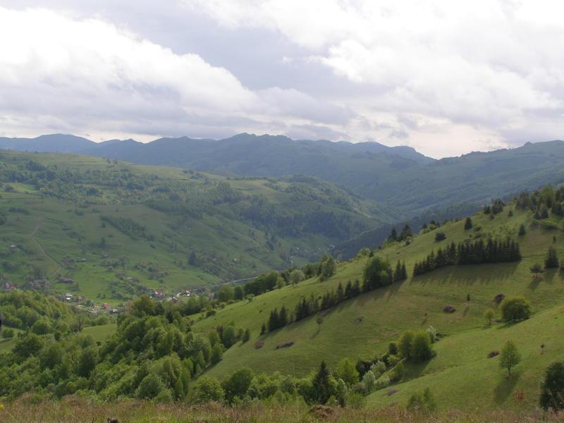 Karpat niva tour '14. Rumania 18517772ht