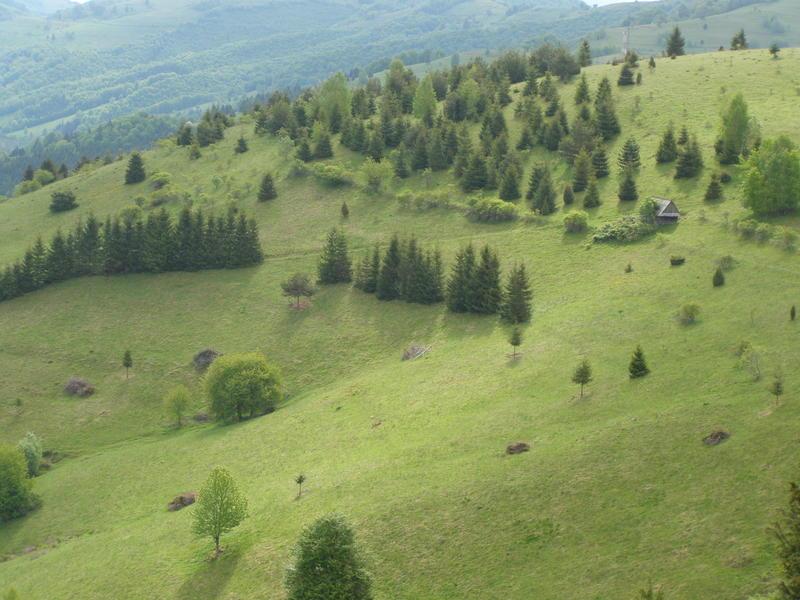 Karpat niva tour '14. Rumania 18517773kg