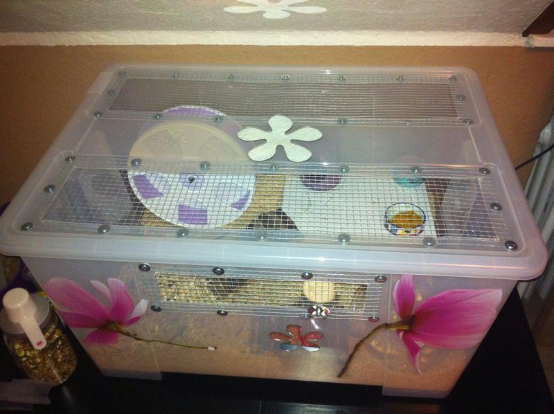 ikea samla bin cage tips how to and diy hamster hideout forum. Black Bedroom Furniture Sets. Home Design Ideas