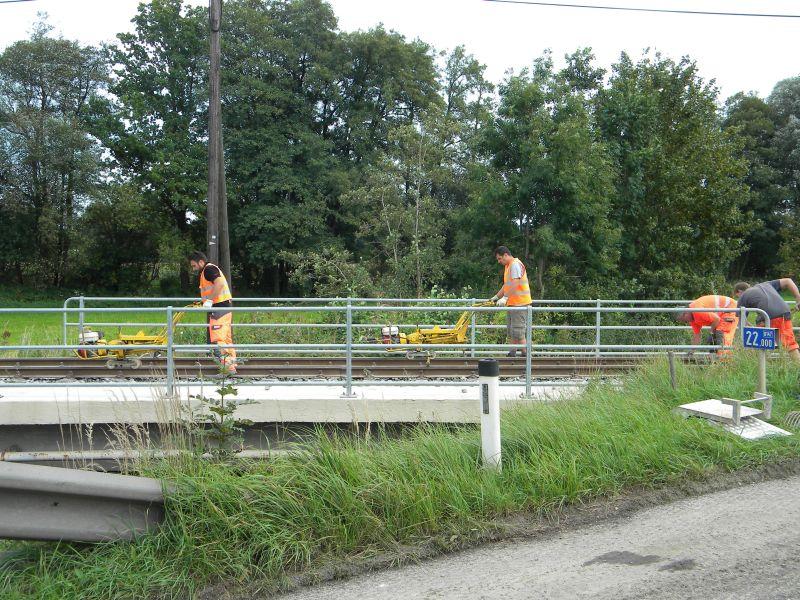 Mattigtalbahn: Bauarbeiten September 2014  19573364mq