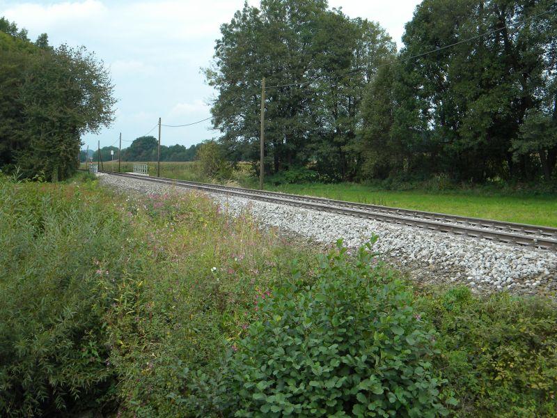 Mattigtalbahn: Bauarbeiten September 2014  19573365yn