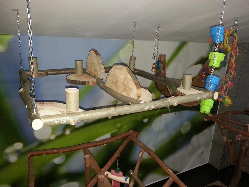 die renovierung unseres vogelzimmers f r unser sechsergespann seite 2. Black Bedroom Furniture Sets. Home Design Ideas