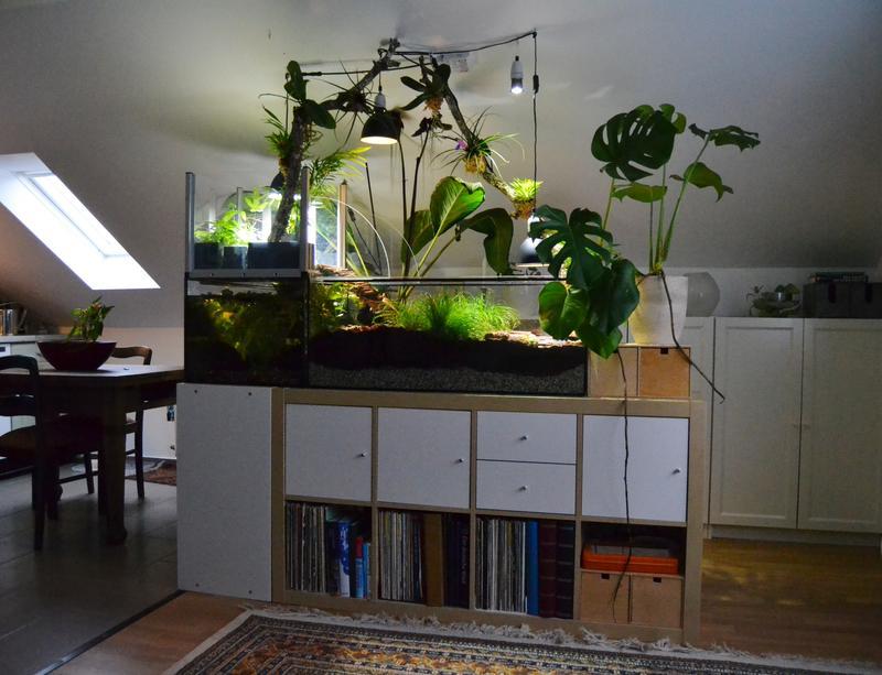 aquarium steht ber. Black Bedroom Furniture Sets. Home Design Ideas