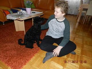 Bogi hat ein neues Zuhause gefunden 20297433zv
