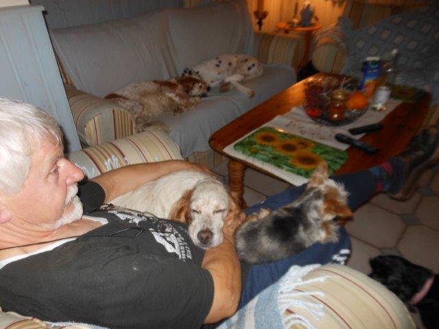 Herzliche Grüße von den HPiN Hunden Regina-jetzt Ina-, Baco, Flora und Luna  20407105gd