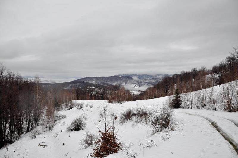 Karpat Niva Winter Tour 2015 20819264el