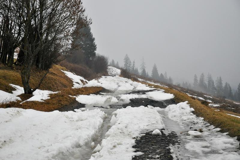 Karpat Niva Winter Tour 2015 20819789gf