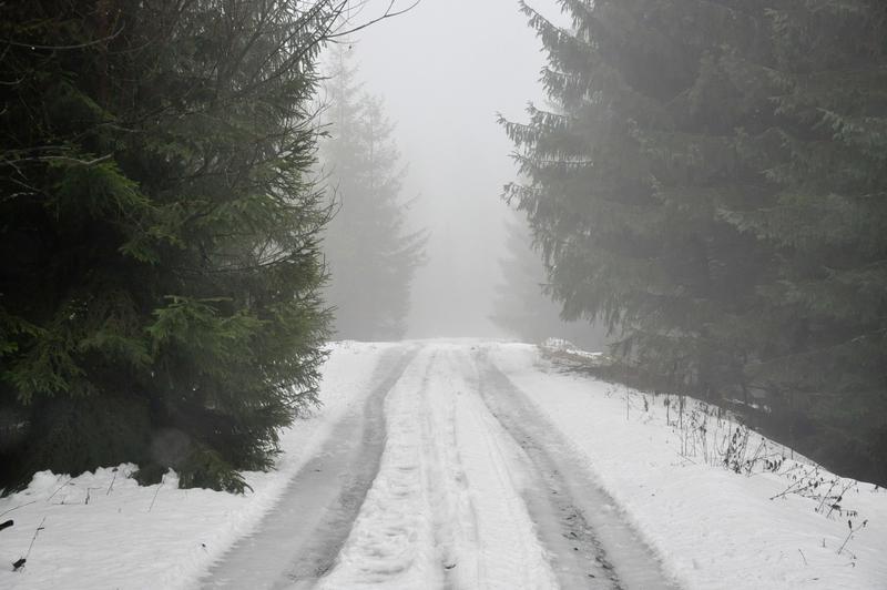 Karpat Niva Winter Tour 2015 20819790ls