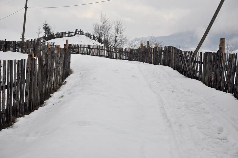 Karpat Niva Winter Tour 2015 20819835cy