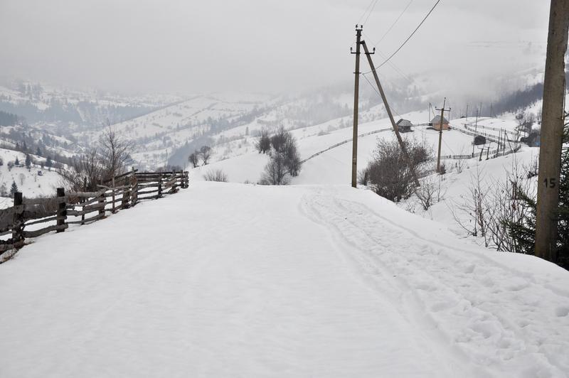 Karpat Niva Winter Tour 2015 20819836md