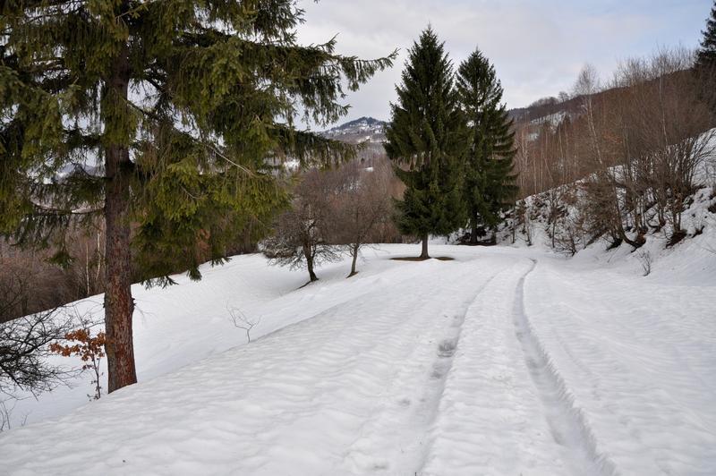 Karpat Niva Winter Tour 2015 20835261qw