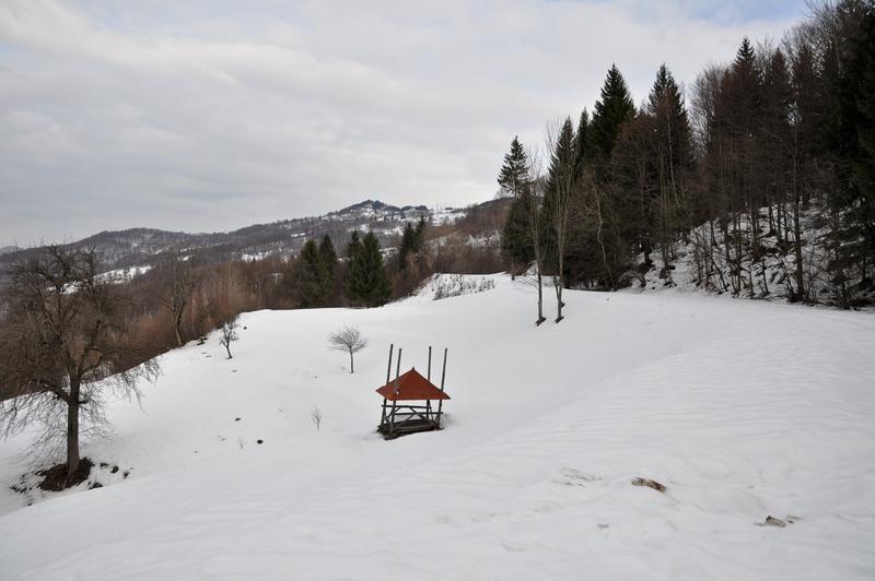 Karpat Niva Winter Tour 2015 20835263hl