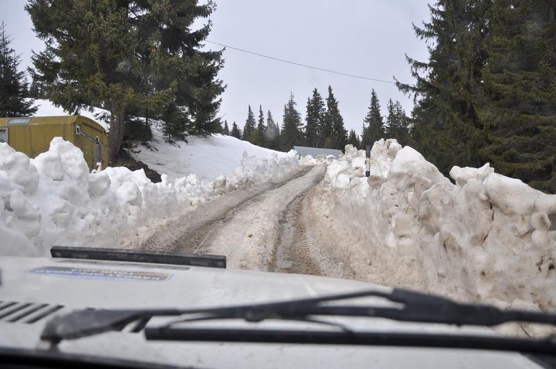 Karpat Niva Winter Tour 2015 20835453rg