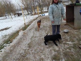 Yuna Karmacs lebt glücklich in Österreich 20949763kn