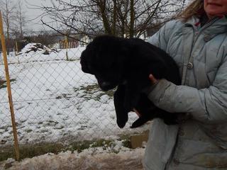 Yuna Karmacs lebt glücklich in Österreich 20949765ey