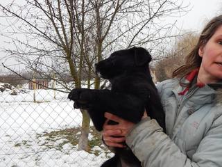 Yuna Karmacs lebt glücklich in Österreich 20949768wg
