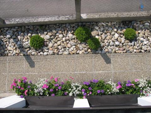 schmaler vorgarten ideen | möbelideen, Garten und Bauten