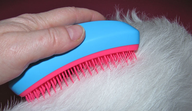 bürste tangle teezer