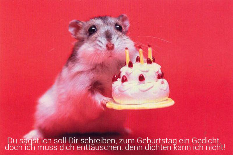 Lustige Geburtstagssprüche. Lustige Geburtstagssprüche sind auf der ...