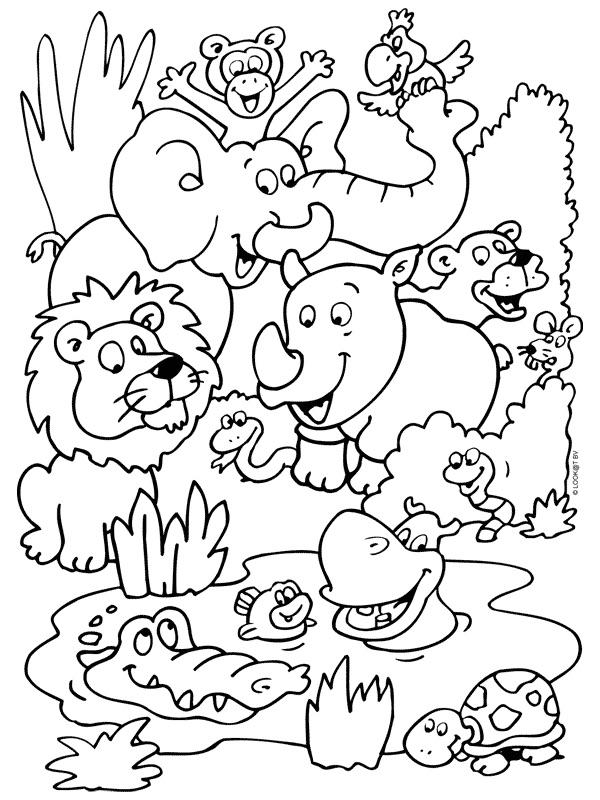 forum Übersicht  re zoo magdeburg erleben sie die