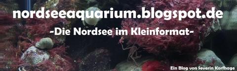 Severins Nordseeblog