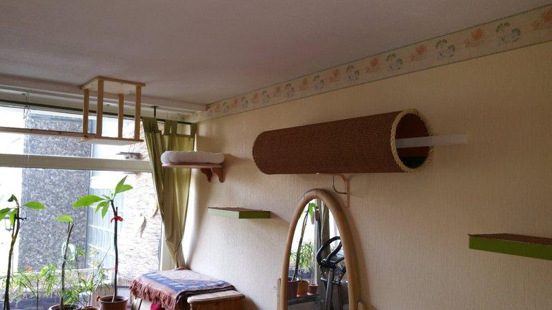 mein wohnzimmer catwalk seite 2 katzen forum. Black Bedroom Furniture Sets. Home Design Ideas