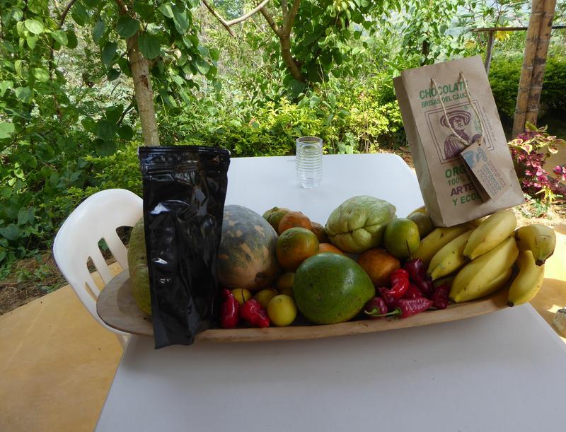 Kleine Früchteauswahl