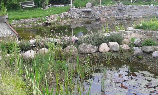 Bau Gartenteich Ca 6x10m Page 12 Mein Schoner Garten Forum