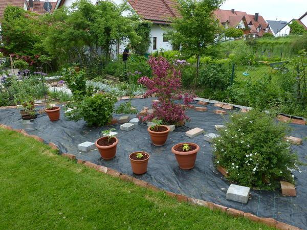 16443920180116 gartengestaltung das inspirationsbuch for Gartengestaltung joanna