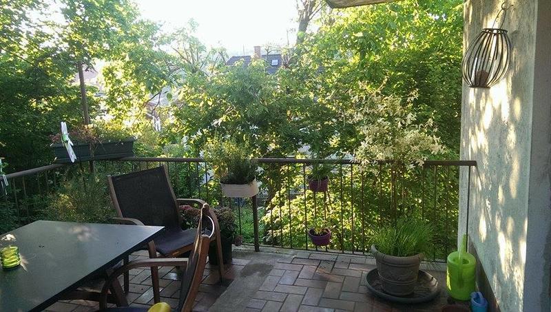 wie mache ich diese terrasse zu einem katzenparadies katzen forum. Black Bedroom Furniture Sets. Home Design Ideas