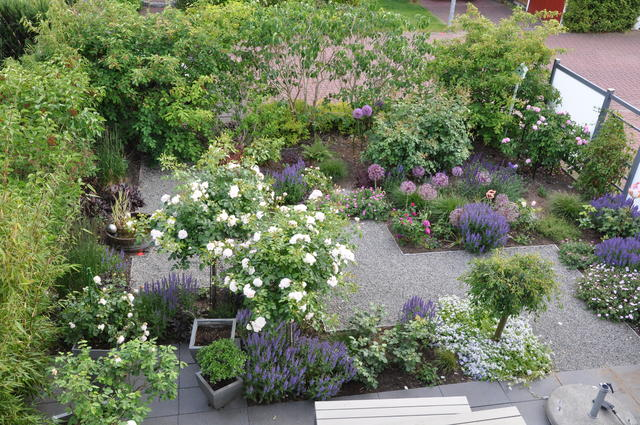 Minigärtchen 2015 - Teil 3 - Sommer - Mein schöner Garten Forum