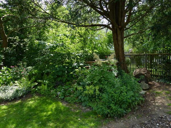 Eure gartenbilder beete und gestaltungsideen sommer for Gartengestaltung 20 qm