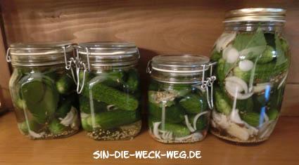 Wilde Fermente III. – Gurken