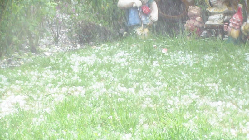 größte hagelkorn der welt