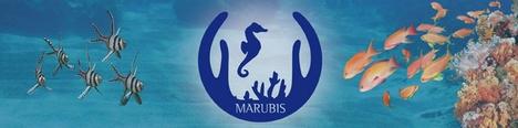 Marubis - Mariner Arten - und Biotopschutz e.V.