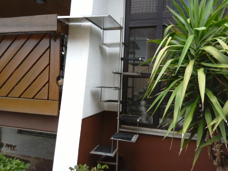 katzenwendeltreppe aus metall katzen forum. Black Bedroom Furniture Sets. Home Design Ideas