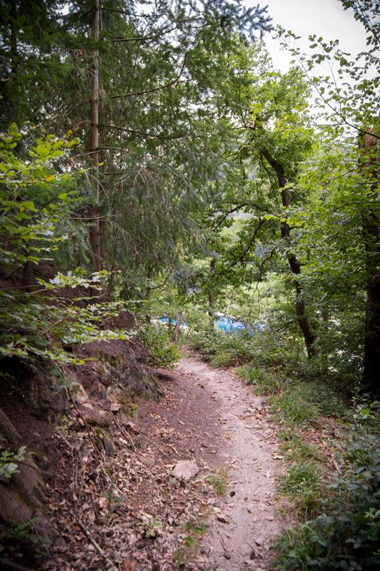 Odenwald singletrail