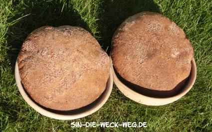 Nachgebacken: Weizenvollkornsauerteigbrot vom Plötzblog
