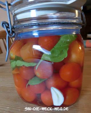 Tomaten-Ferment