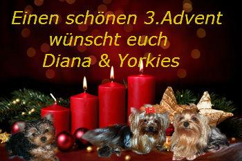 An den Beitrag angehängtes Bild: http://up.picr.de/23958411fe.jpg