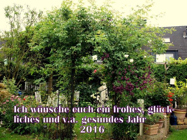 Und Damit Ihr Noch Im Letzten Jahr Stöbern Könnt, Stelle Ich Hier Den Link  Zu 2015 Ein. Http://www.mein Schoener Garten.de/jforum/posts/list/0/4815180.page  ...