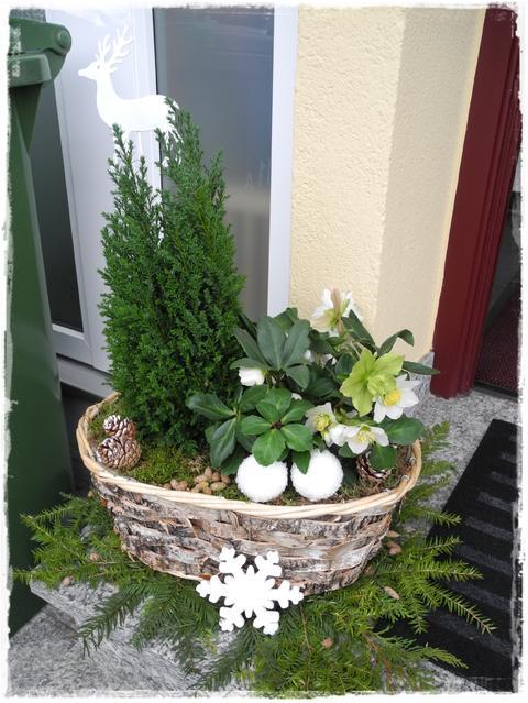 Januar Deko - Page 4 - Mein schöner Garten Forum